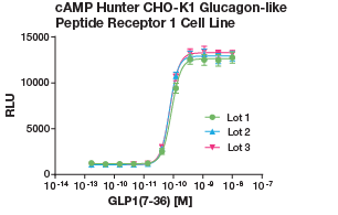 cAMP Hunter CHO-K1 Glucagon-Like Peptide Receptor 1 Cell Line