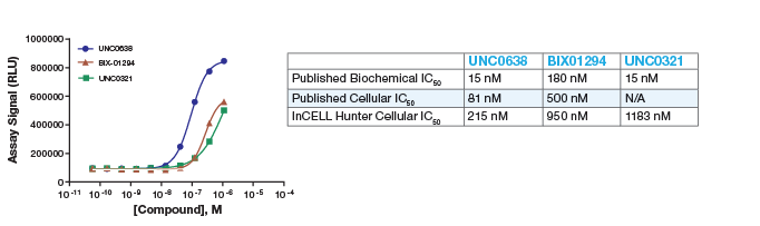 G9a Methyltransferase InCELL Hunter Assay