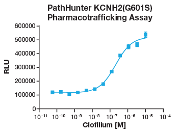 KCNH2(G601S) Pharmacotrafficking Assay